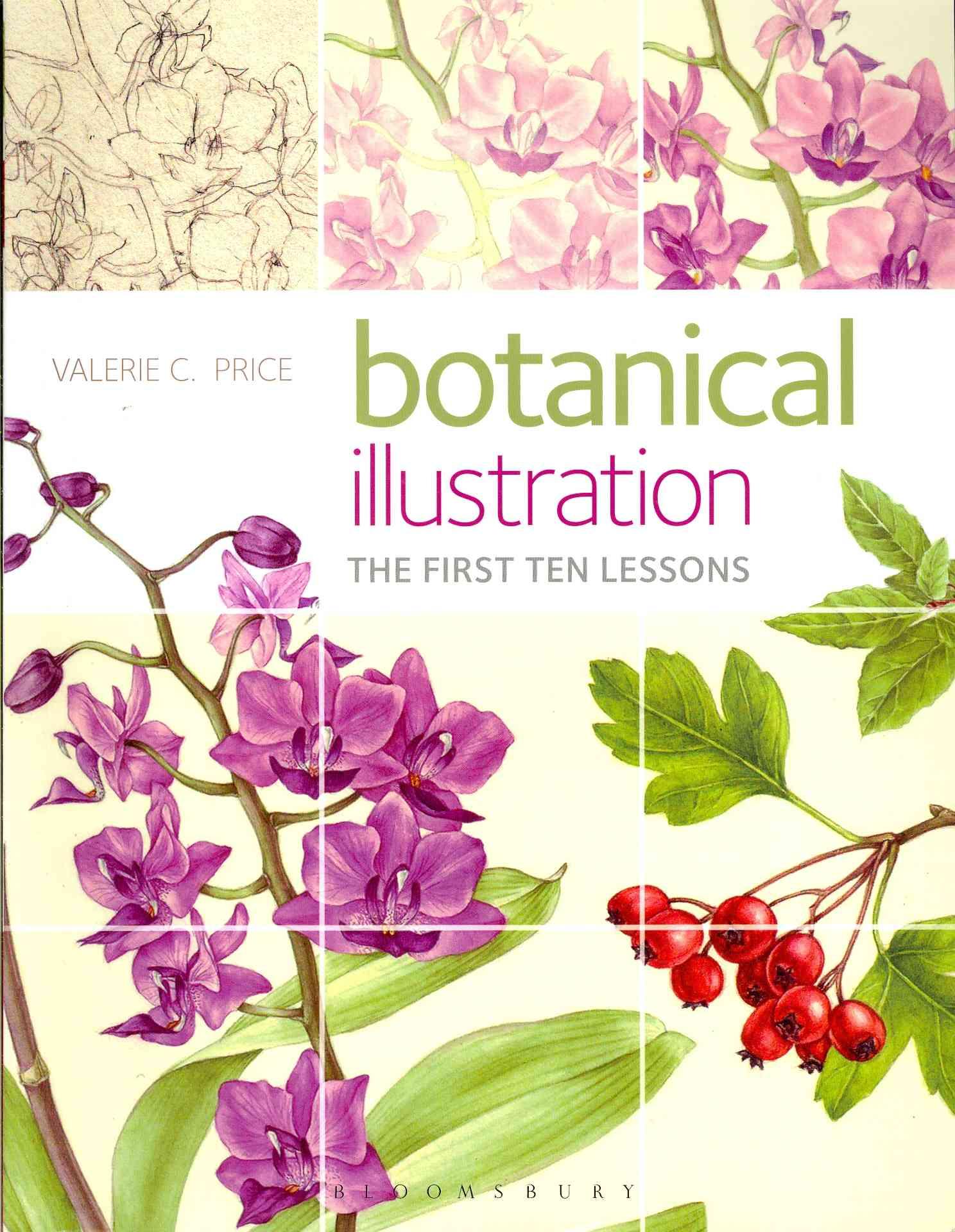 Botanical Illustration By Price, Valerie